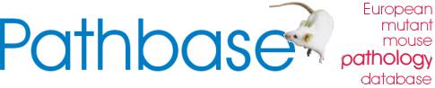 Pathbase